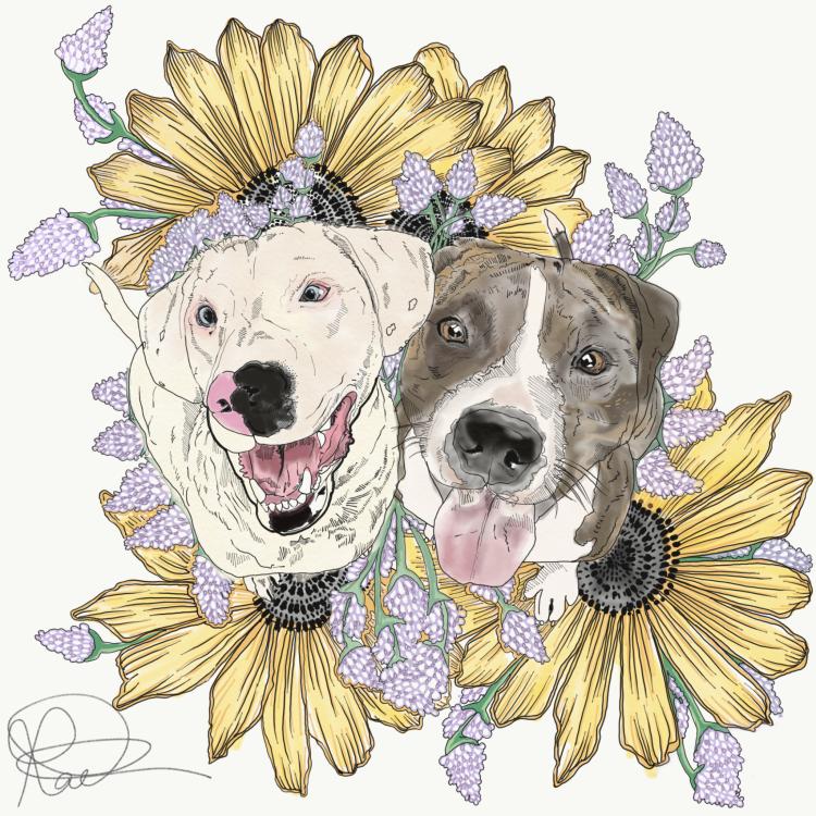 Dog Portrait Commission for Faith Williams